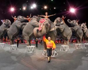 Los 5 circos mas famosos